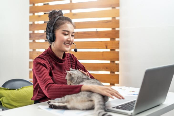woman teaching online with a cat - how to teach in a different country