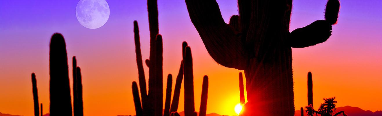 Teach In Arizona Teaching Jobs In Arizona Teach Away
