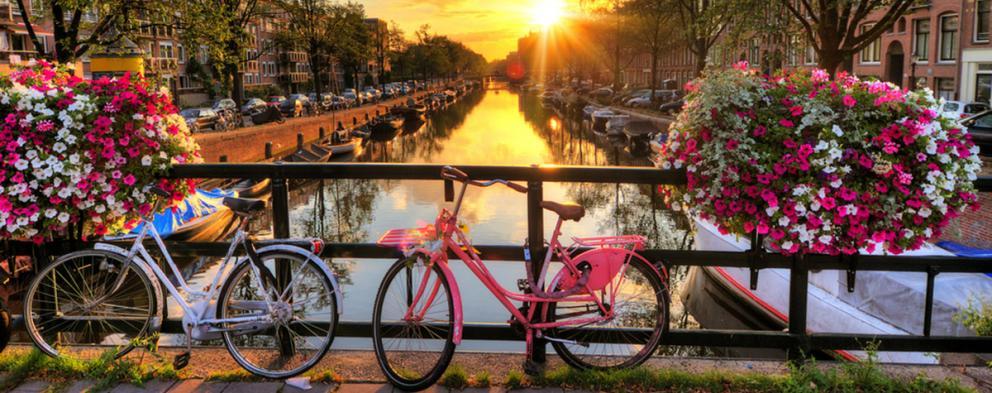 Teaching in the Netherlands   Teach Away