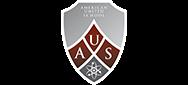 American United School